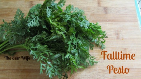Those carrot tops are just too pretty to throw out! Use them in this Falltime Pesto! // The Ezer Wife