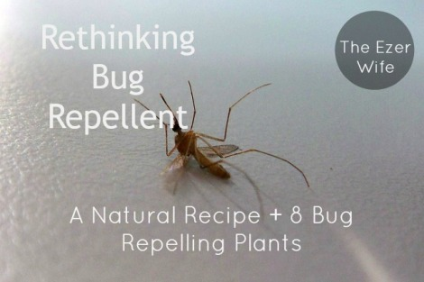 Time to rethink your bug repellent. A DIY recipe + 8 bug-repelling plants // The Ezer Wife