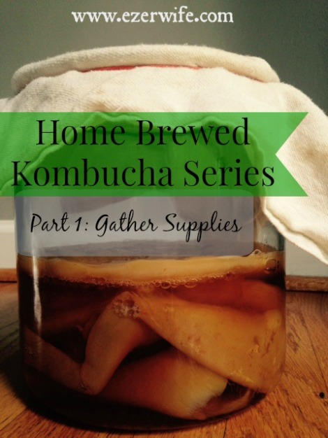 Store bought kombucha is expensive! Learn how easy and affordable home brewed kombucha can be with this series. // The Ezer Wife