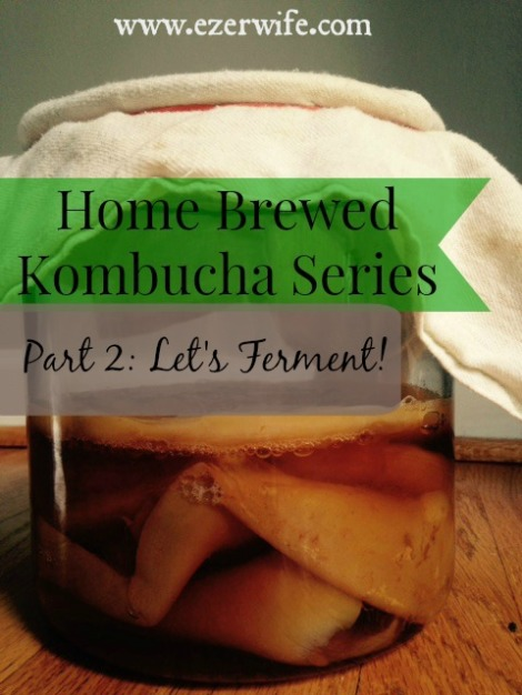 Tired of spending $3 on store bought kombucha? Follow this simple tutorial to brew your own! Home Brewed Kombucha Series Part 2: Let's Ferment // The Ezer Wife